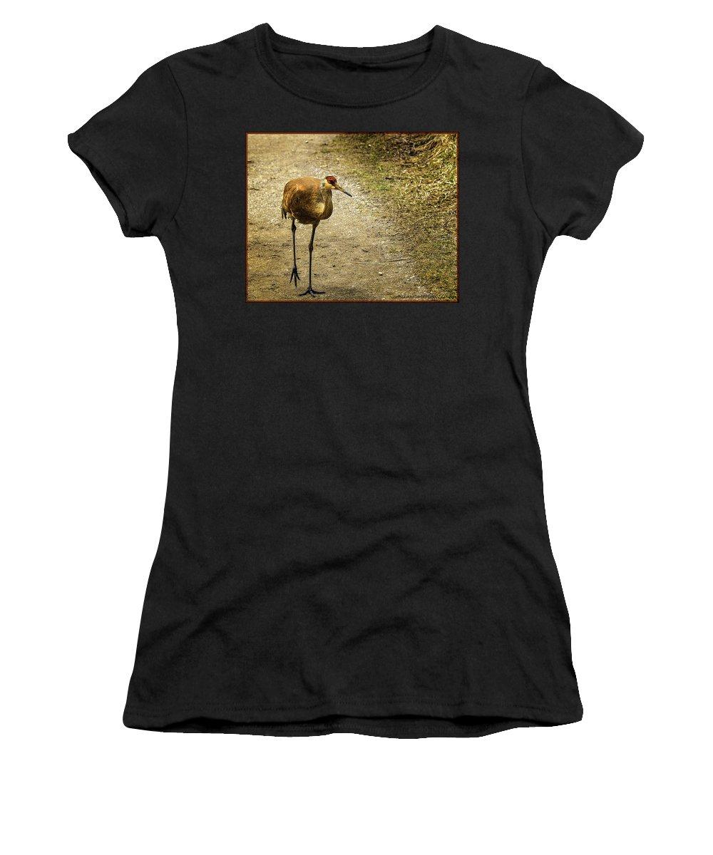 North American Crane Women's T-Shirt (Athletic Fit) featuring the photograph Sandhill Crane On The Road by LeeAnn McLaneGoetz McLaneGoetzStudioLLCcom