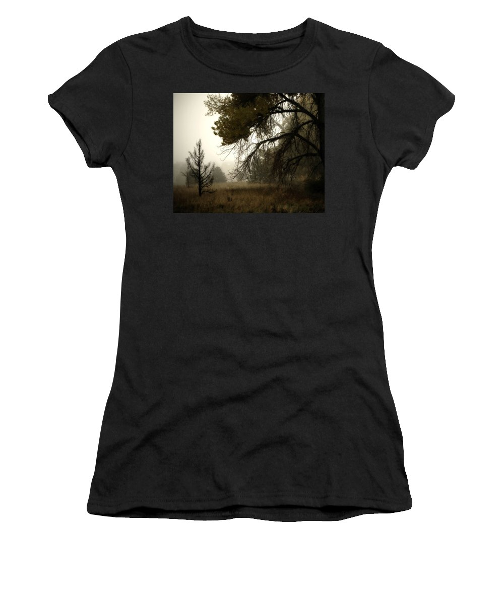 Fog Women's T-Shirt (Athletic Fit) featuring the photograph Scary Trees by Marilyn Hunt