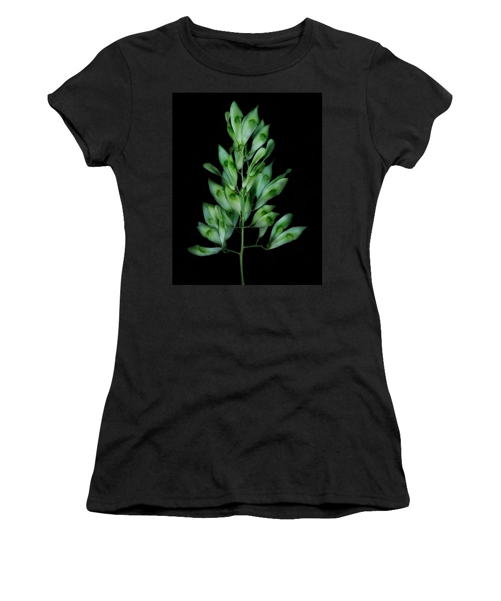 Seed Women's T-Shirt (Athletic Fit) featuring the photograph Seed Tree by Robert Woodward