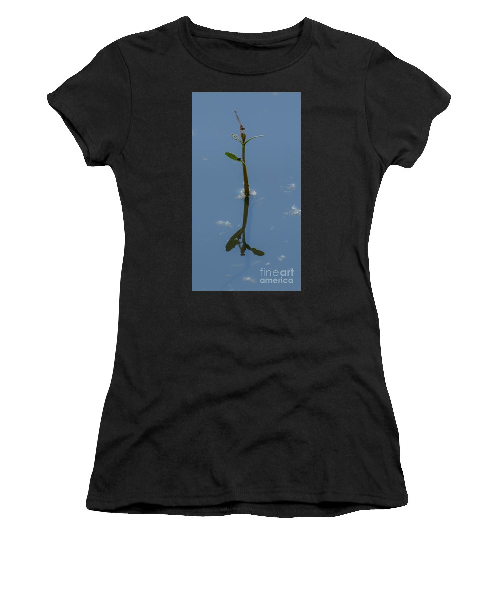 Dragonfly Women's T-Shirt (Athletic Fit) featuring the photograph Shadow In The Water by Donna Brown