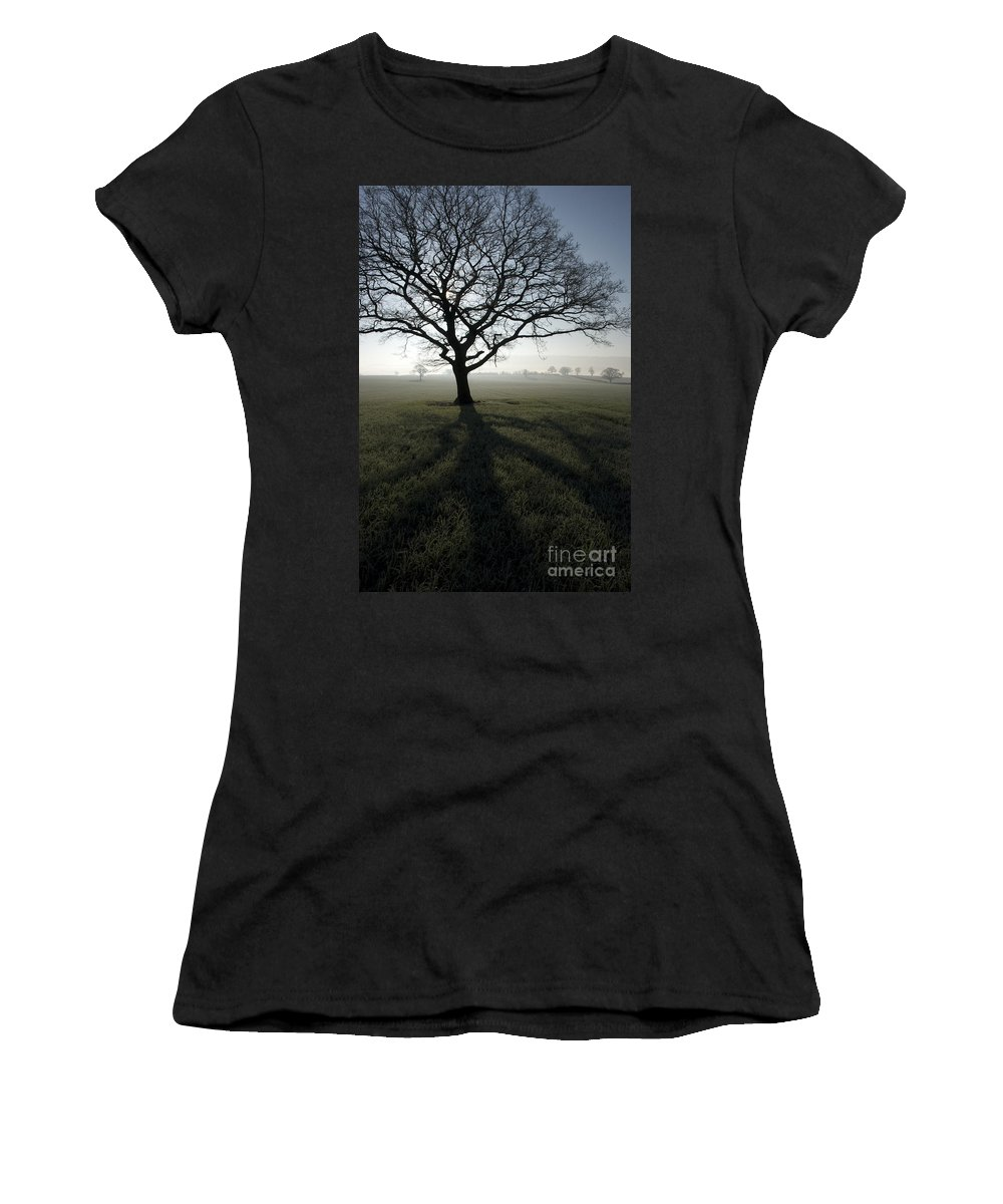 Acton Women's T-Shirt (Athletic Fit) featuring the photograph Shadow Tree by Anne Gilbert