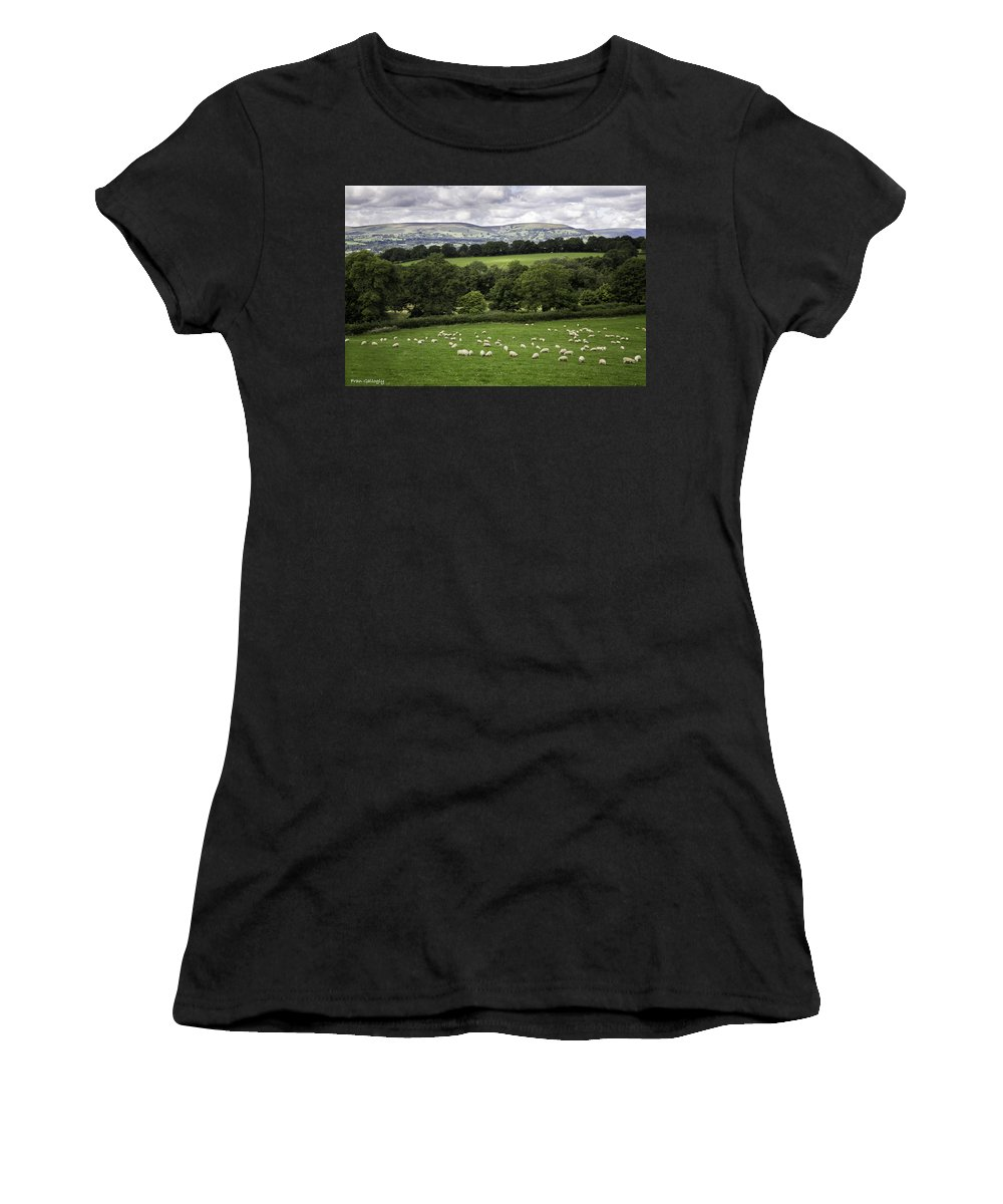 Wales Women's T-Shirt featuring the photograph Sheep And More Sheep by Fran Gallogly