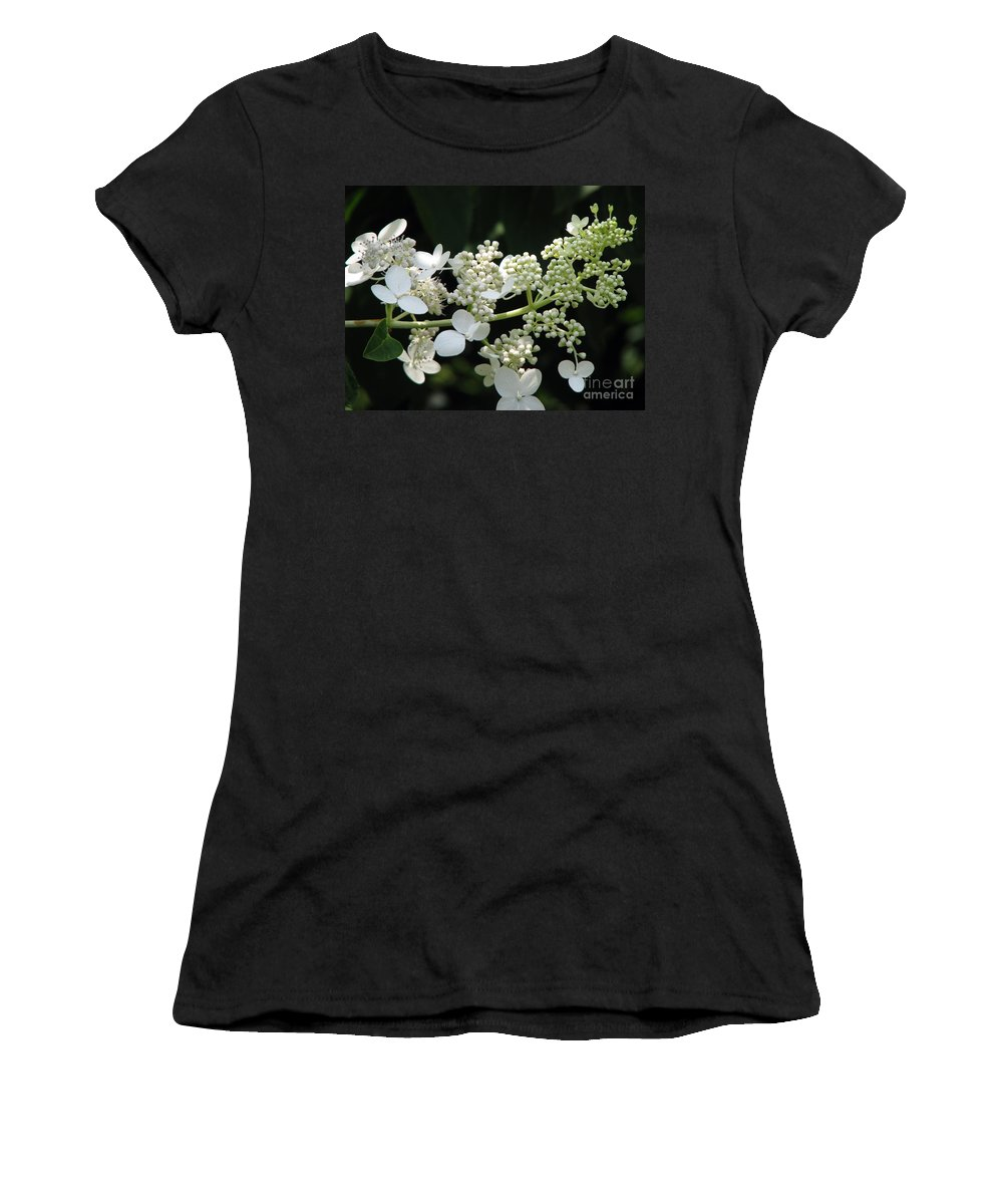 Hydrangea Women's T-Shirt featuring the photograph Simply by Amanda Barcon