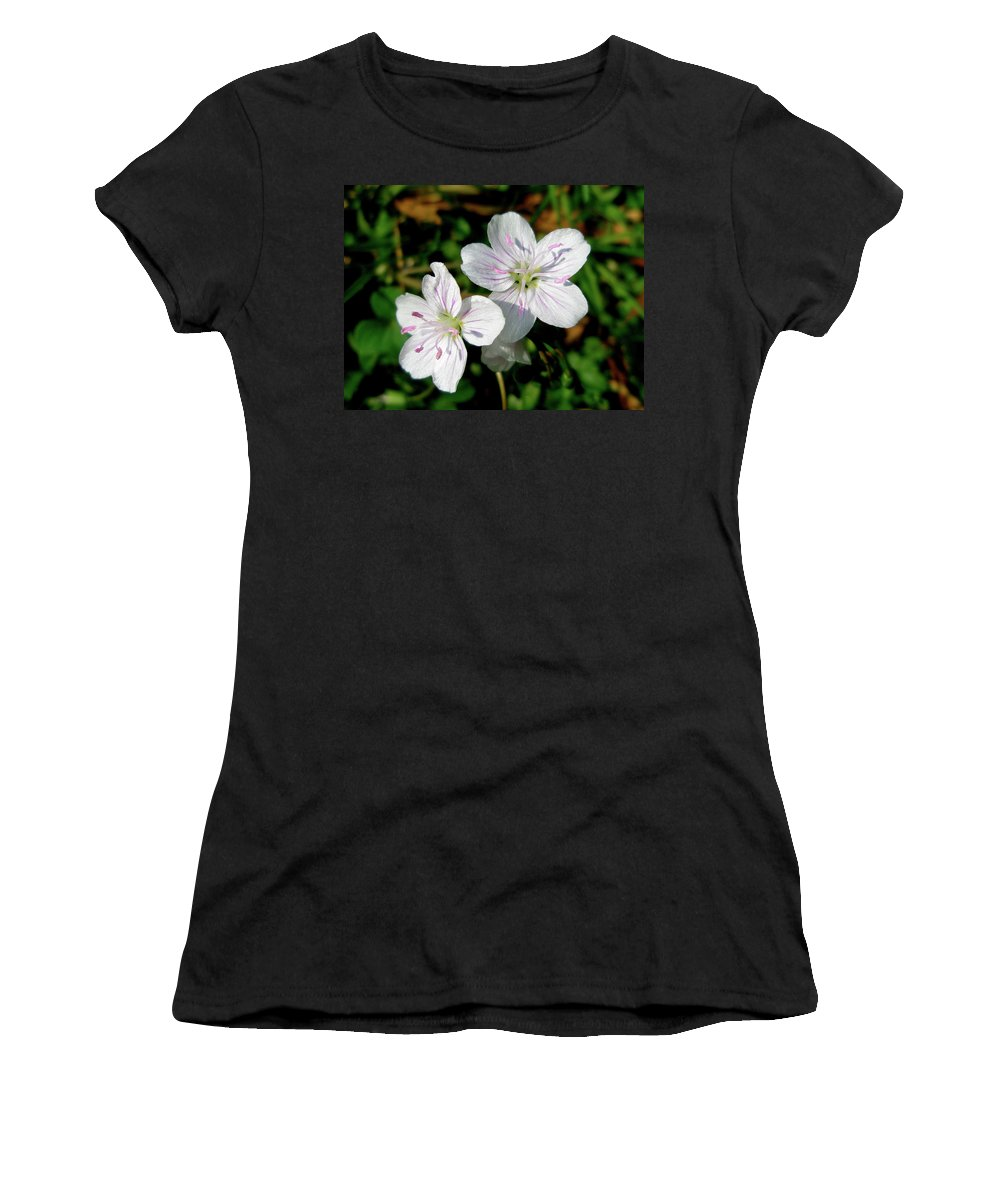 Wildflower Women's T-Shirt (Athletic Fit) featuring the photograph Spring Beauty Wildflowers - Claytonia Virginica by Mother Nature