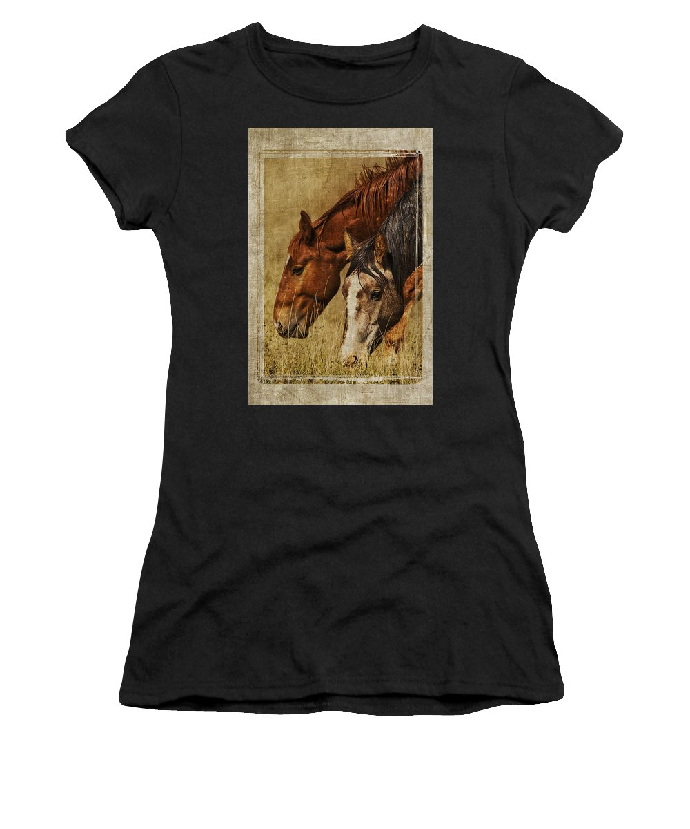 Spring Creek Basin Wild Horses Women's T-Shirt (Athletic Fit) featuring the photograph Spring Creek Basin Wild Horses by Priscilla Burgers