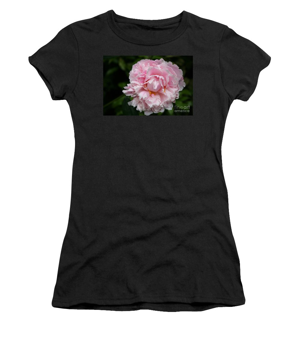 Peony Women's T-Shirt featuring the photograph Spring In Pink by Christiane Schulze Art And Photography