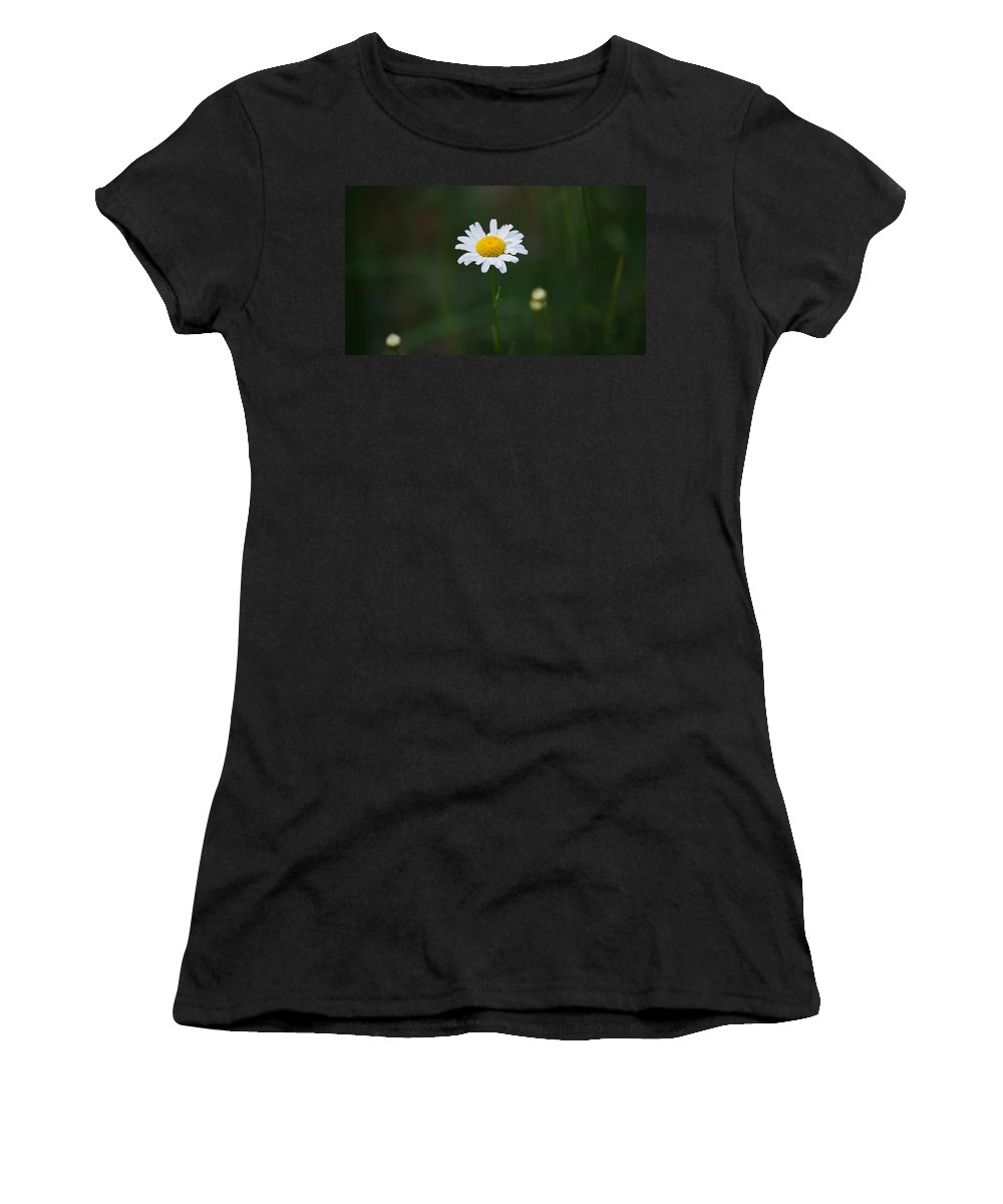 Daisy Women's T-Shirt featuring the photograph Stand Alone by Crystal Harman