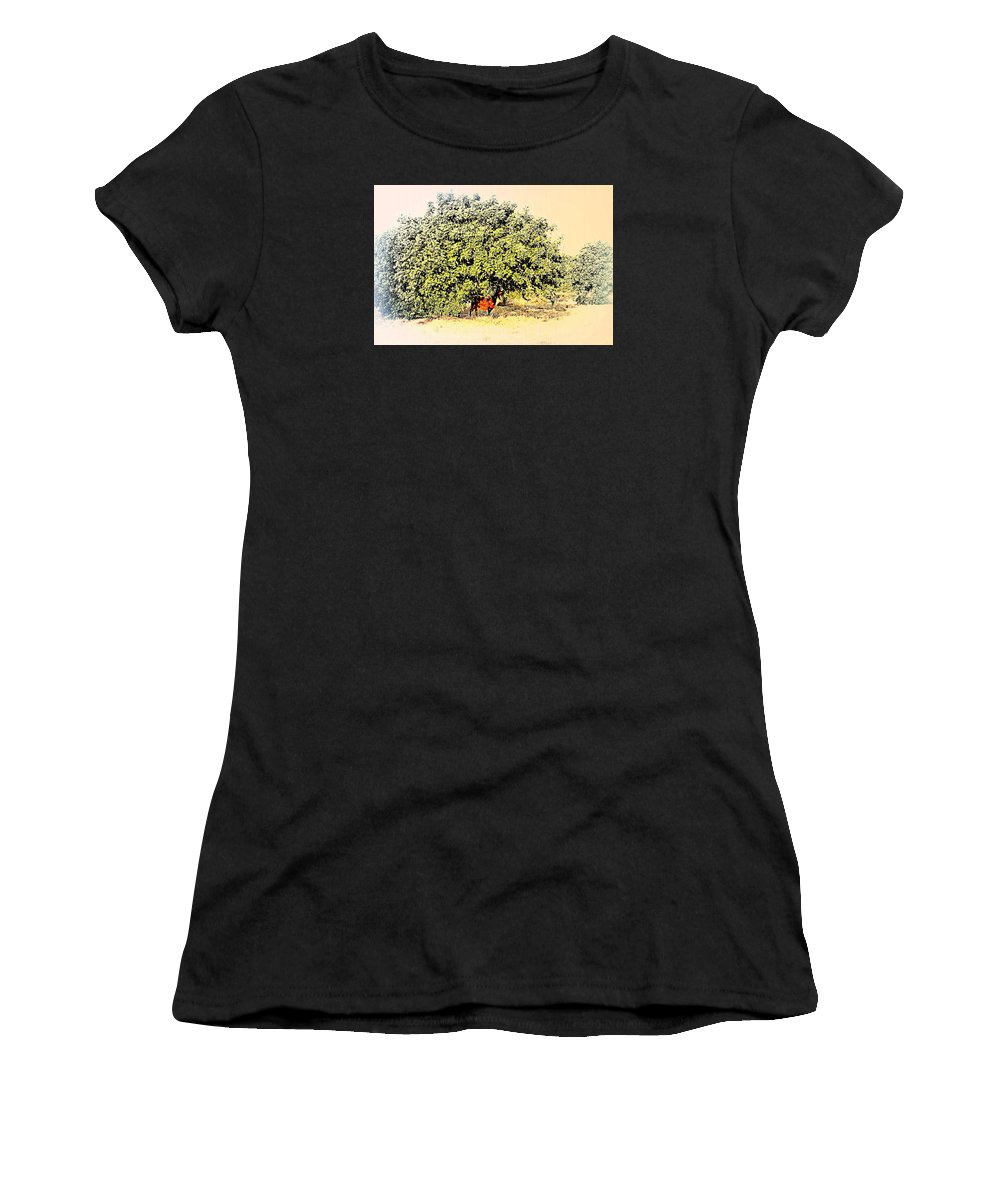 Goat Women's T-Shirt featuring the photograph I'm Standing In The Chilly Shadow Under My Tree by Hilde Widerberg