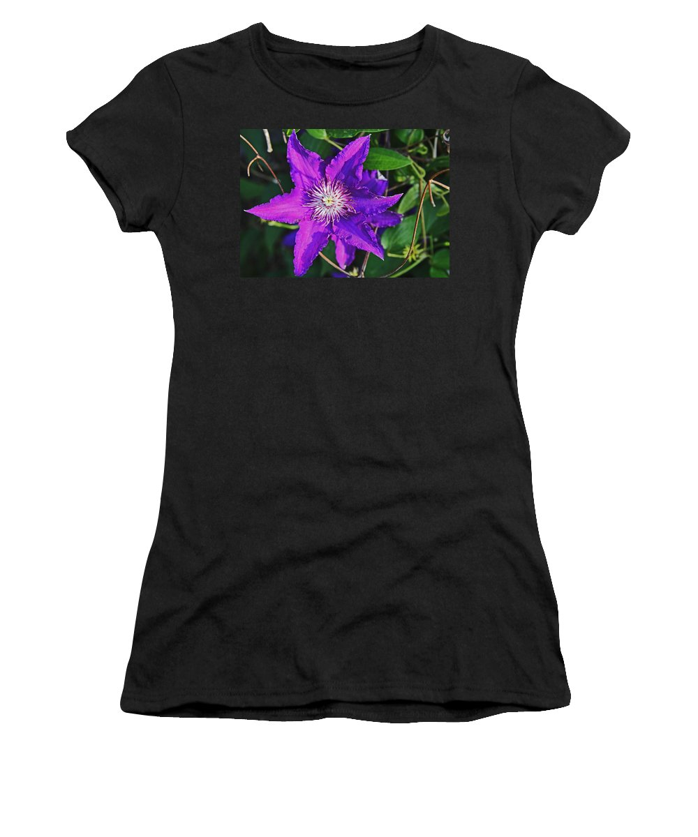 Purple Women's T-Shirt featuring the photograph Star by John Mullins