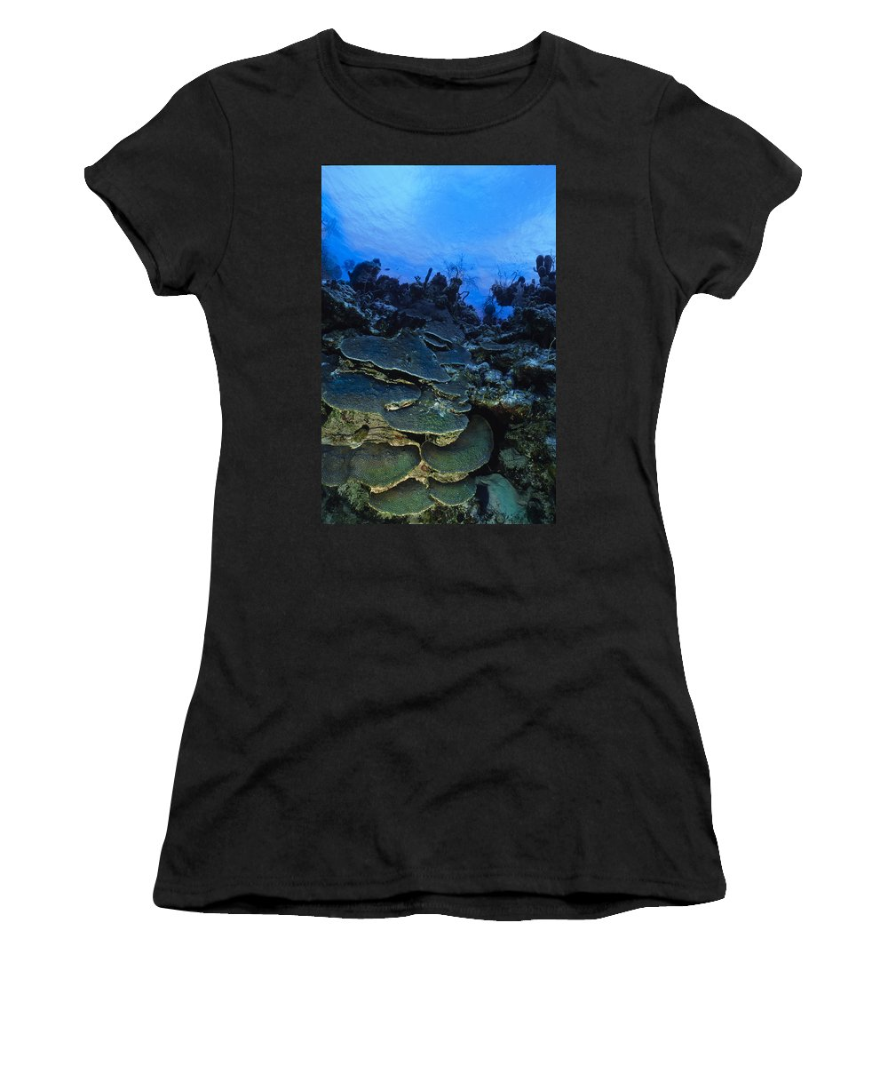 Angle Women's T-Shirt (Athletic Fit) featuring the photograph Steps Of The Sea by Sandra Edwards