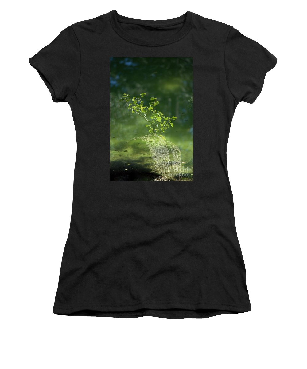 Reflections Women's T-Shirt featuring the photograph Summer Reflections by Sharon Elliott