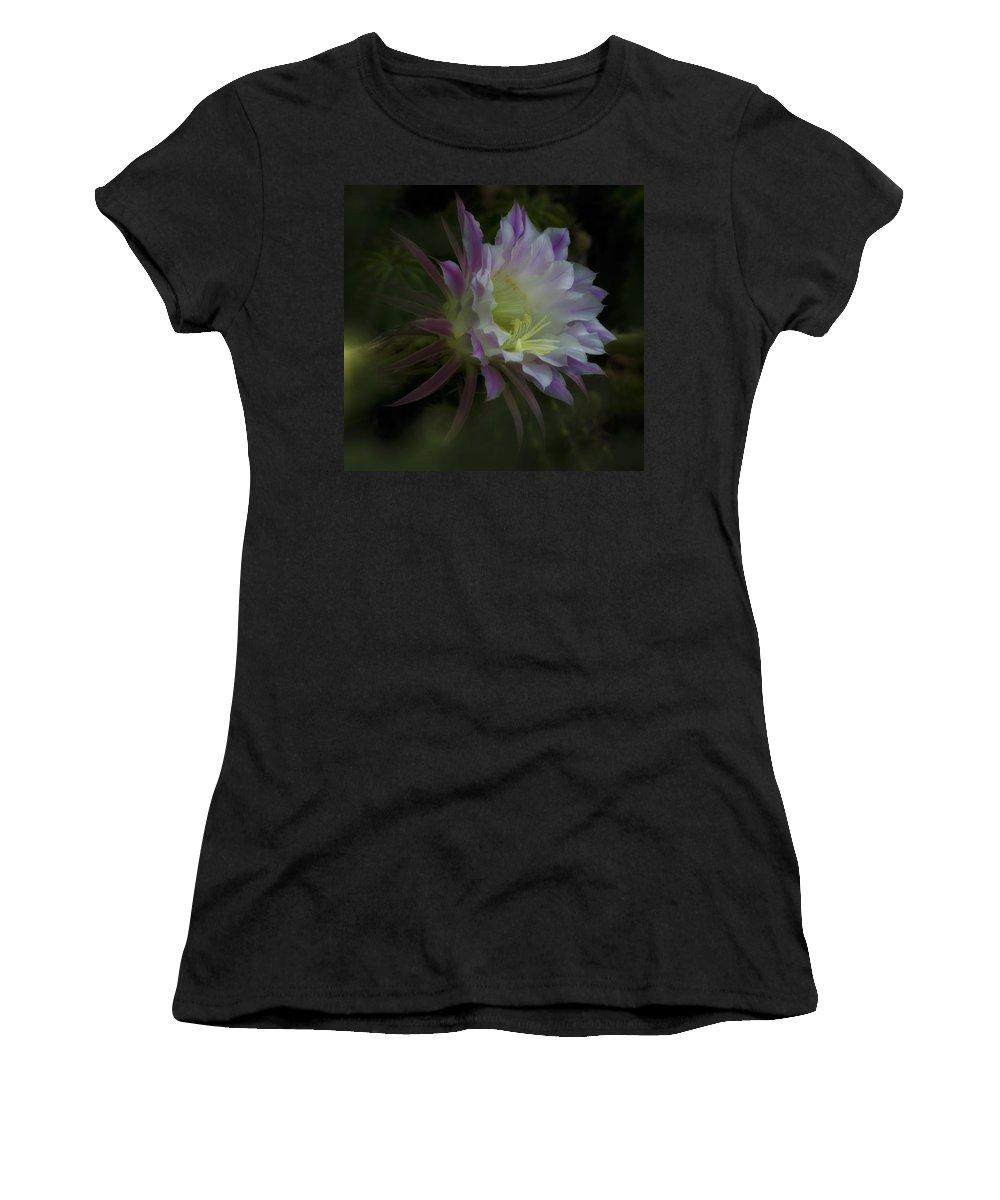 Cactus Flower Women's T-Shirt featuring the photograph Summer Whispers by Saija Lehtonen