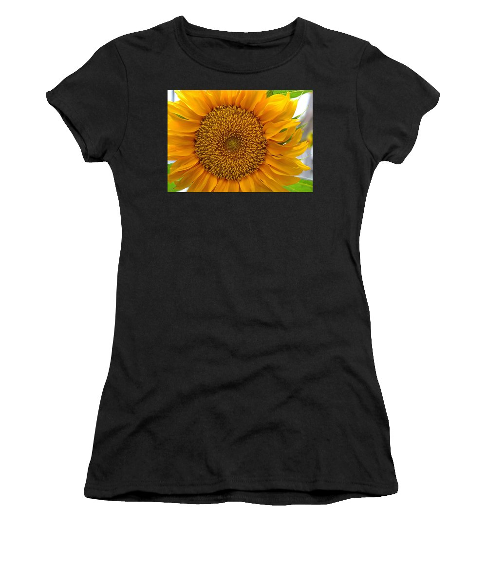 Sunflower Women's T-Shirt featuring the photograph Sunflower by April Patterson