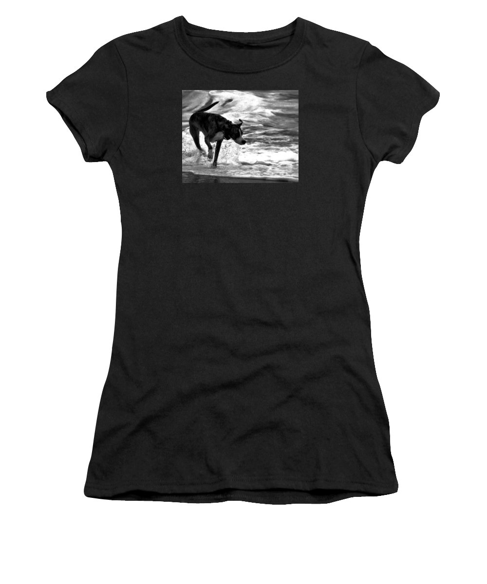 Black And White Women's T-Shirt featuring the photograph Surfer Bird by Robert McCubbin