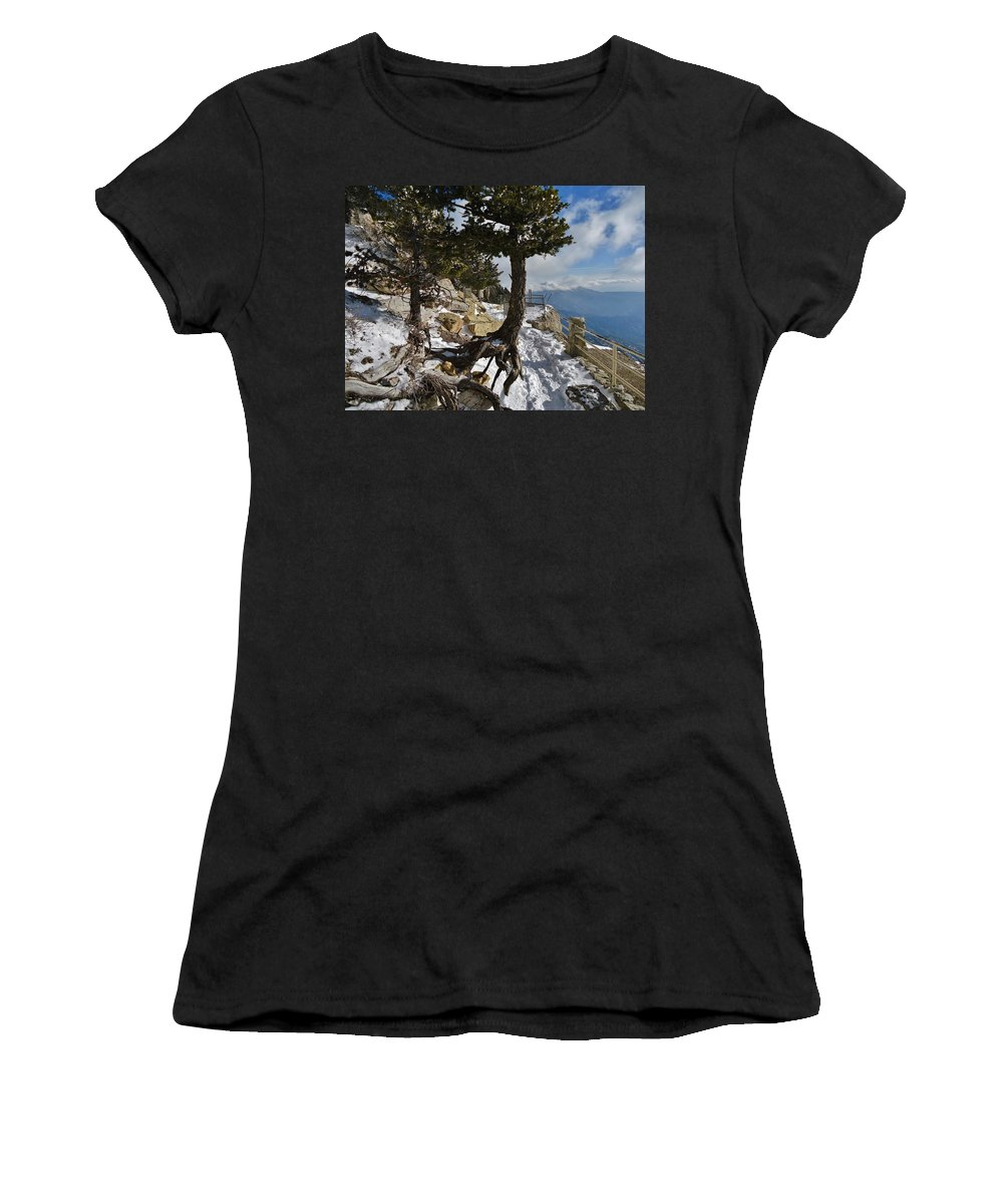 Tree Root Women's T-Shirt featuring the photograph Suspended In Air by Lois  Rivera