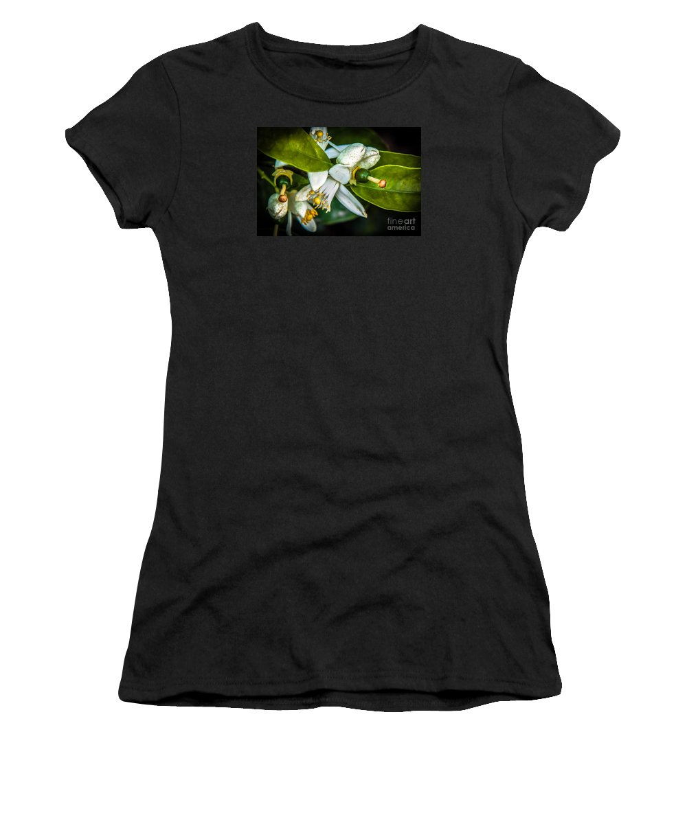 Arizona Women's T-Shirt (Athletic Fit) featuring the photograph The Baby by Robert Bales