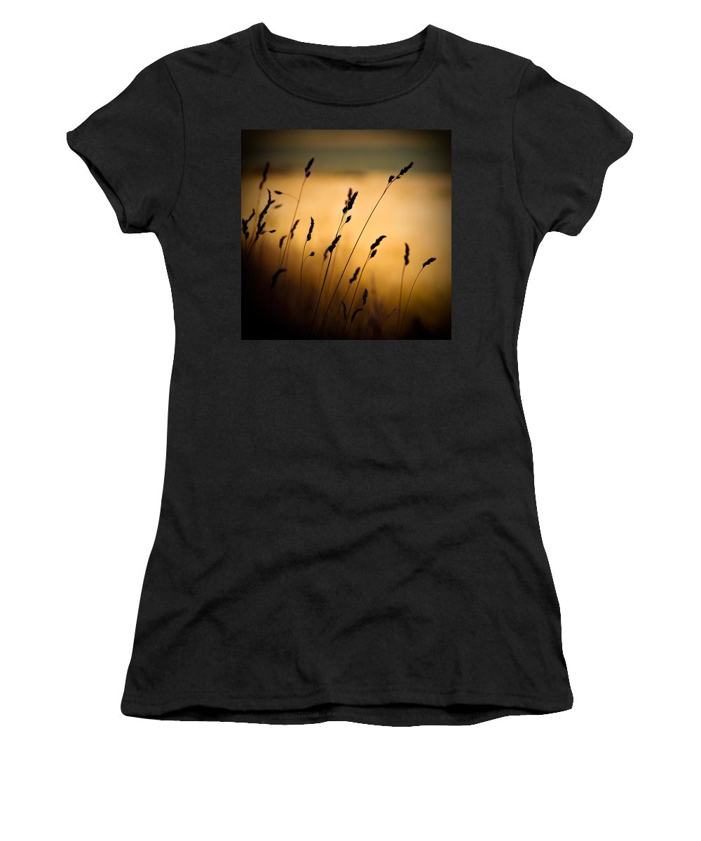 Filed At Sunset Women's T-Shirt (Athletic Fit) featuring the photograph The Field by Dave Bowman