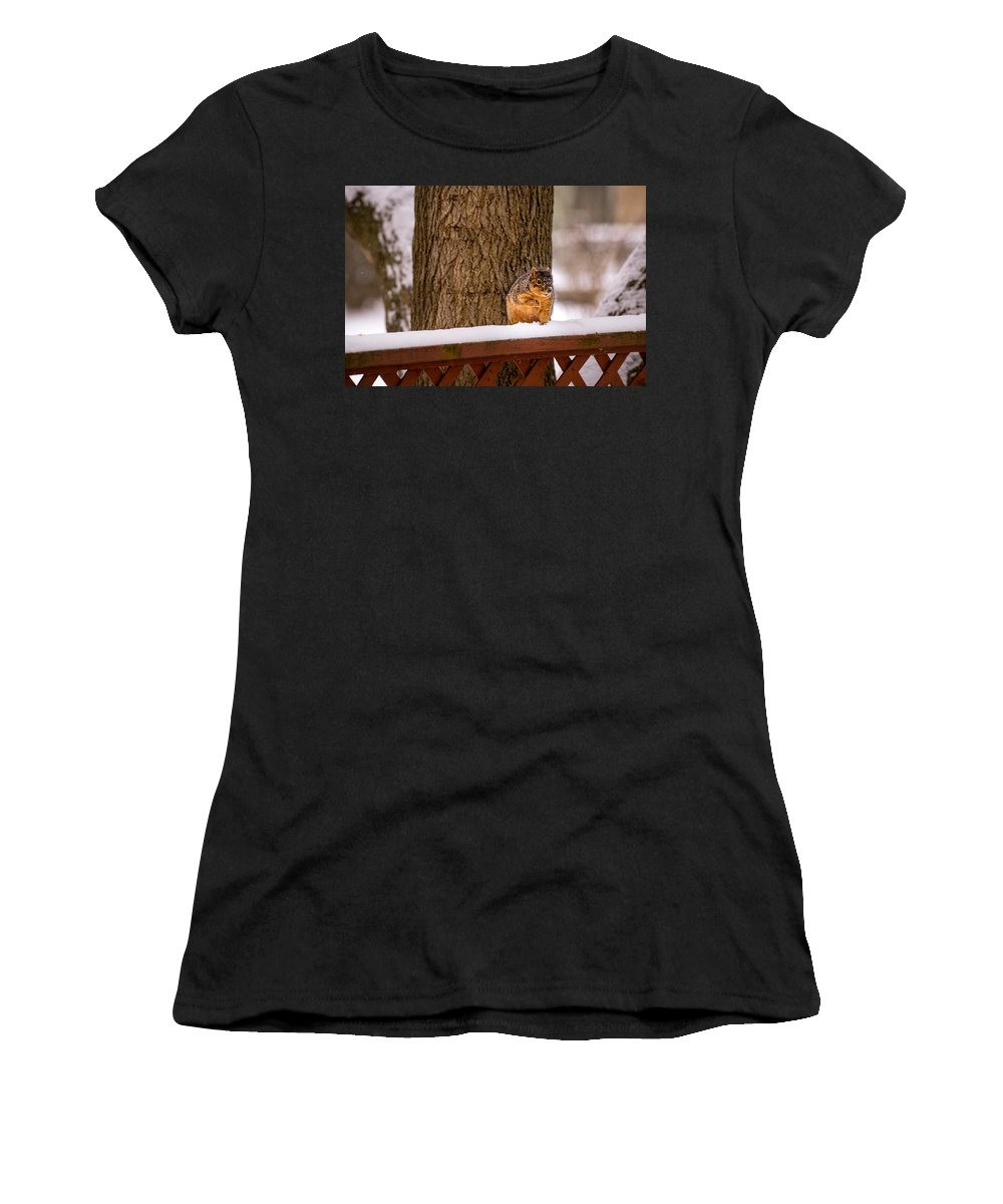 Canton Mi Women's T-Shirt (Athletic Fit) featuring the photograph The Grey Squirrel George In Winter by Onyonet Photo Studios