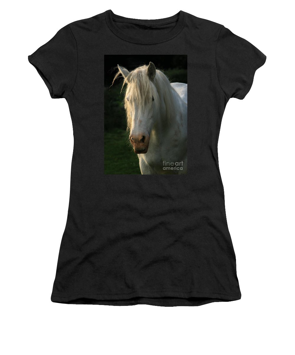 Unicorn Women's T-Shirt (Athletic Fit) featuring the photograph The Light In The Mane by Angel Tarantella