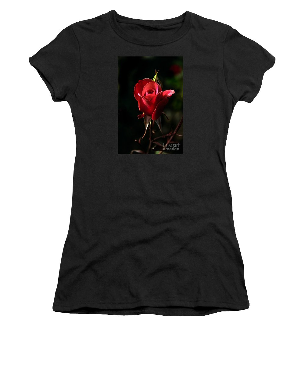 Rose Women's T-Shirt featuring the photograph The Red Rode Bud by Robert Bales
