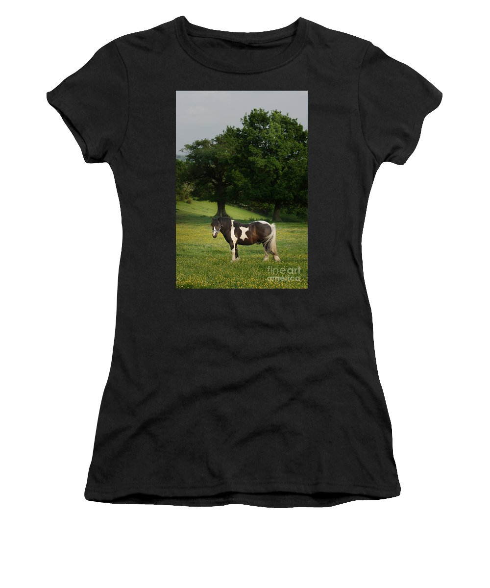 Horse Women's T-Shirt (Athletic Fit) featuring the photograph The Sunny Meadow by Angel Tarantella