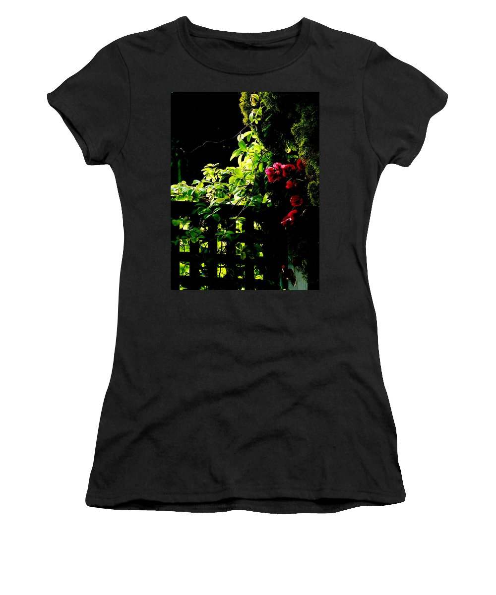 Backlit Women's T-Shirt featuring the photograph The Trellis by Steve Taylor