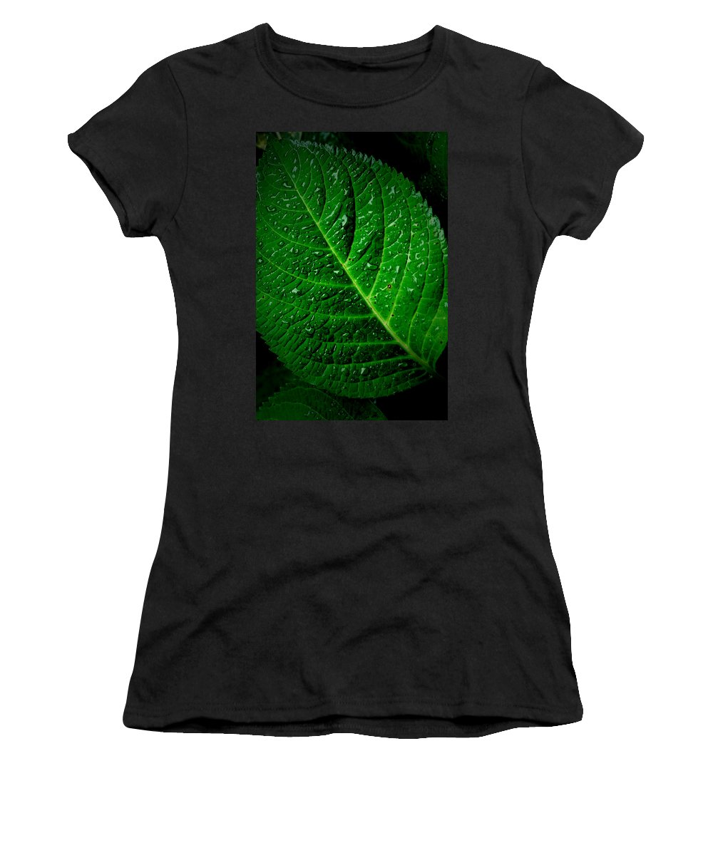 Leaf Women's T-Shirt (Athletic Fit) featuring the photograph Thirsty by David Weeks
