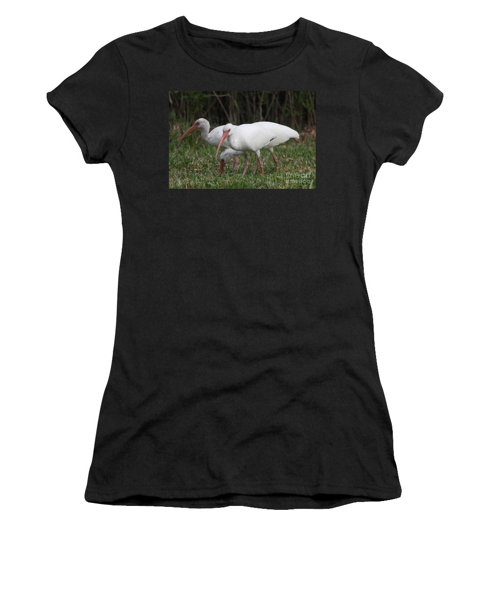 Ibis Women's T-Shirt (Athletic Fit) featuring the photograph Three Ibis Together by Christiane Schulze Art And Photography