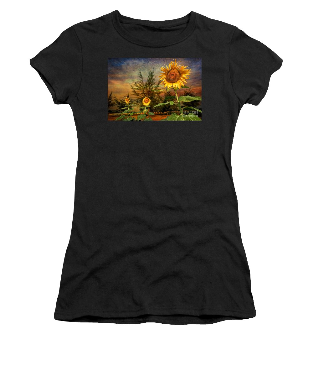 Sunflower Women's T-Shirt featuring the photograph Three Sunflowers by Adrian Evans