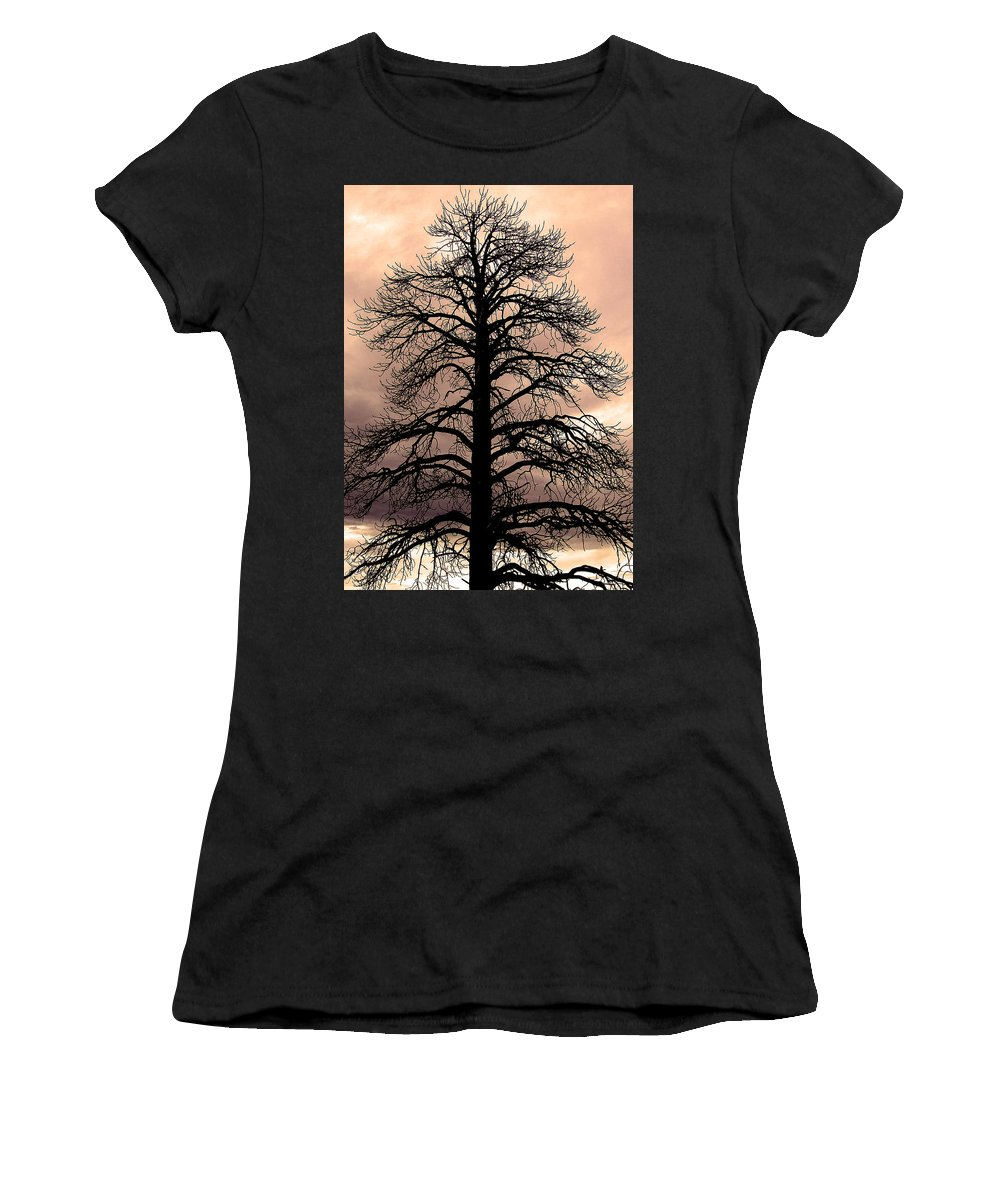 Tree Women's T-Shirt featuring the photograph Tree Silhouette by Laurel Powell