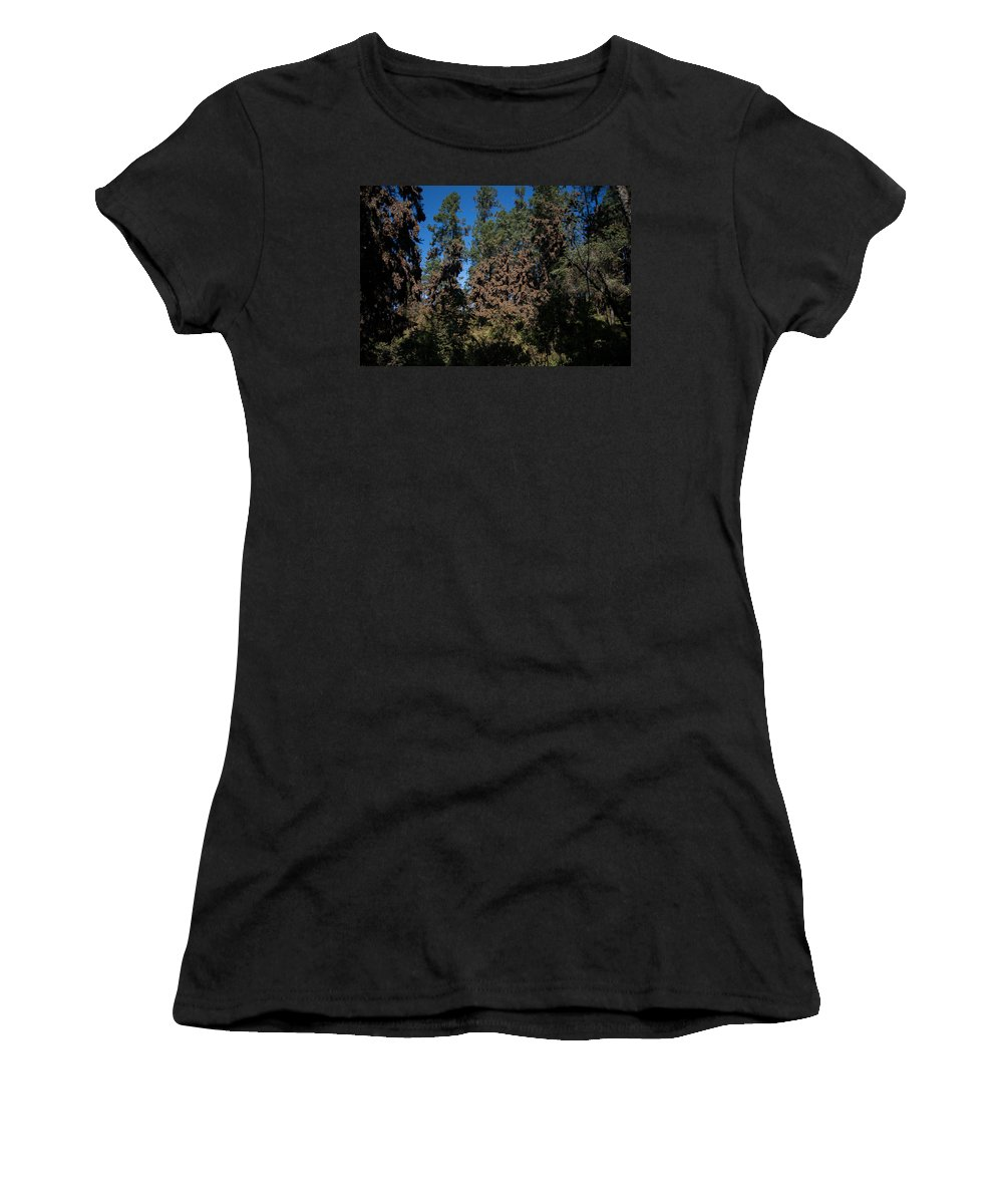 Animals Women's T-Shirt (Athletic Fit) featuring the digital art Trees Covered With Monarch Butterflies by Carol Ailles