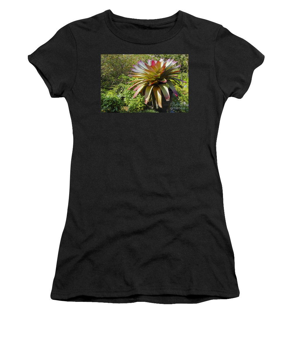 Monteverde Costa Rica Bromeliad Plant Tropical Plants Bloom Blooms Gardens Gardens Leaf Leaves Still Life Nature Women's T-Shirt (Athletic Fit) featuring the photograph Tropical Bromeliad by Bob Phillips