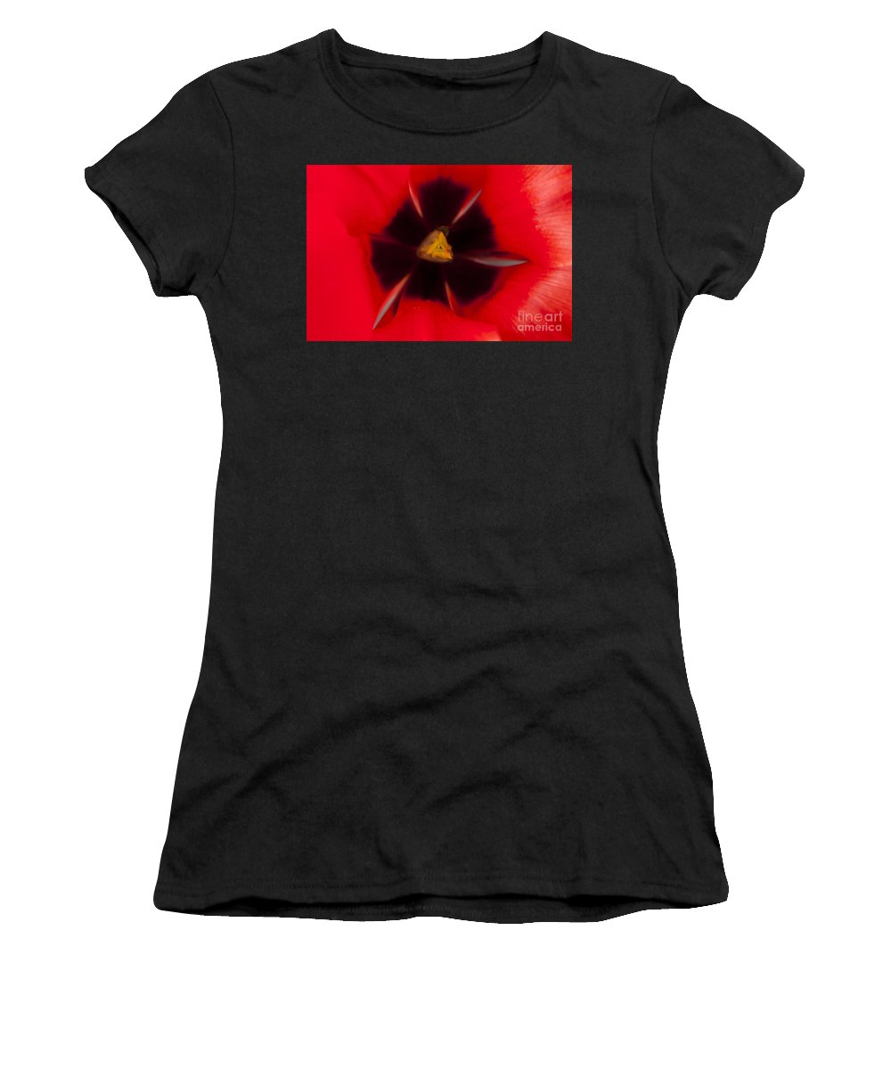 Red Tulips Women's T-Shirt featuring the photograph Tulip Macro 1 by Steve Purnell