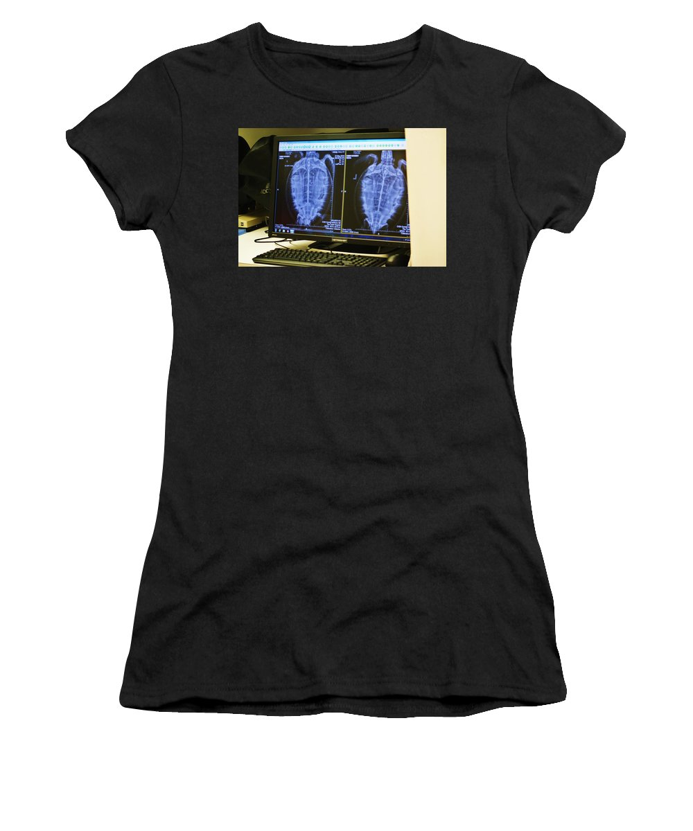 X-ray Women's T-Shirt featuring the photograph Turtle X-ray by Chuck Hicks