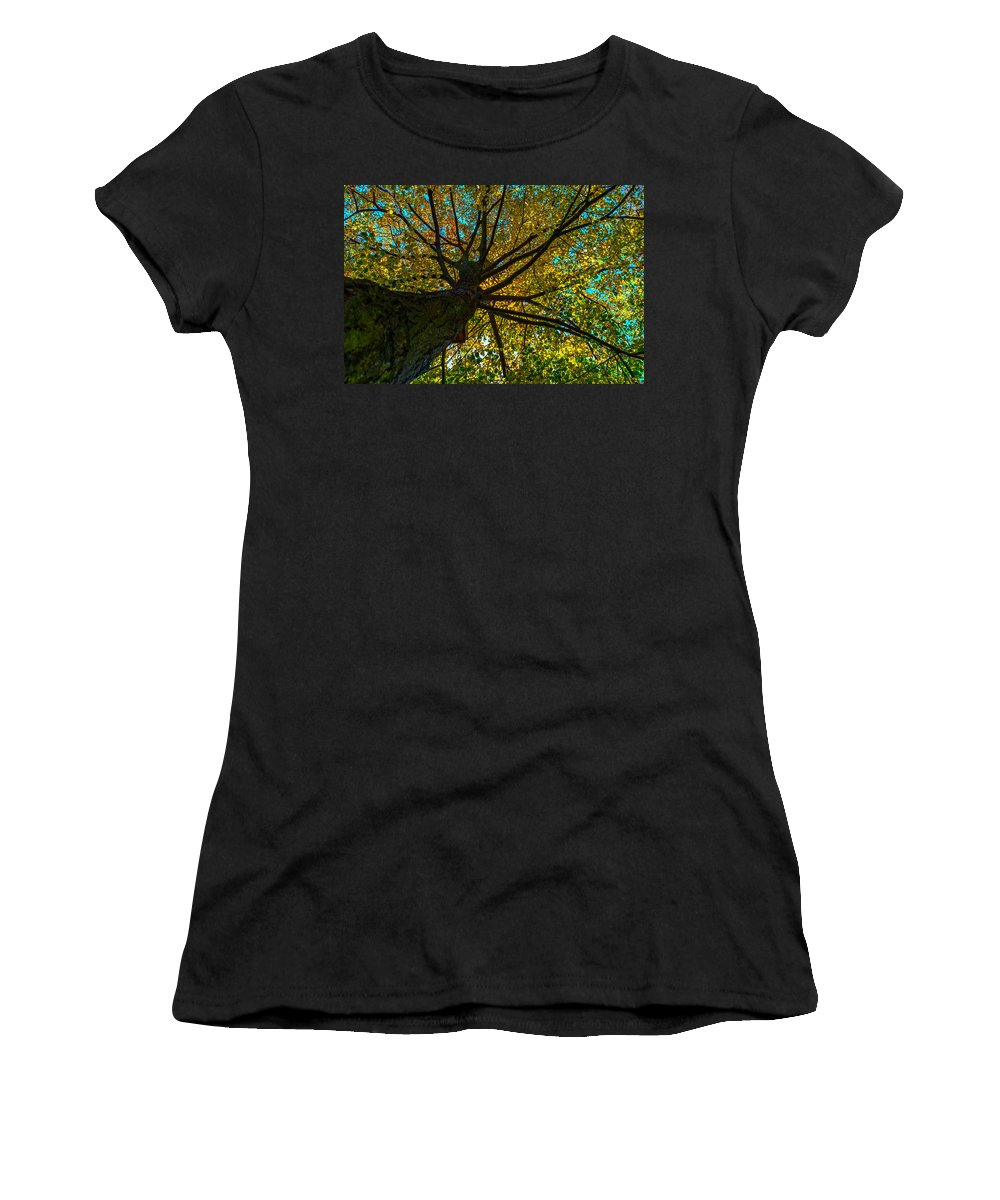 Under The Trees Skirt Women's T-Shirt featuring the photograph Under The Tree S Skirt by Tgchan