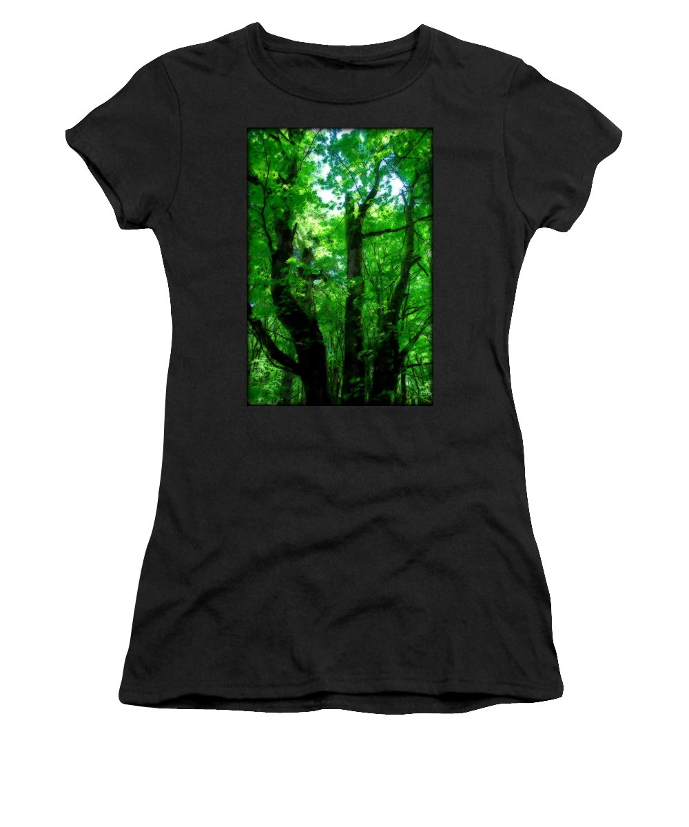 Trail Women's T-Shirt (Athletic Fit) featuring the photograph Up Through The Trees by Kathy Sampson