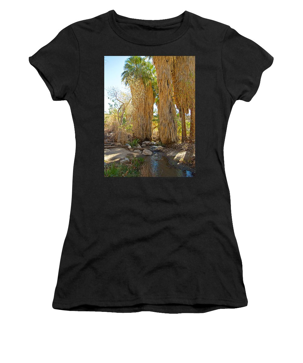 Washingtonian Fan Palms With Large Skirts In Andreas Canyon In Indian Canyons Women's T-Shirt (Athletic Fit) featuring the photograph Washingtonian Fan Palms With Large Skirts In Andreas Canyon-ca by Ruth Hager
