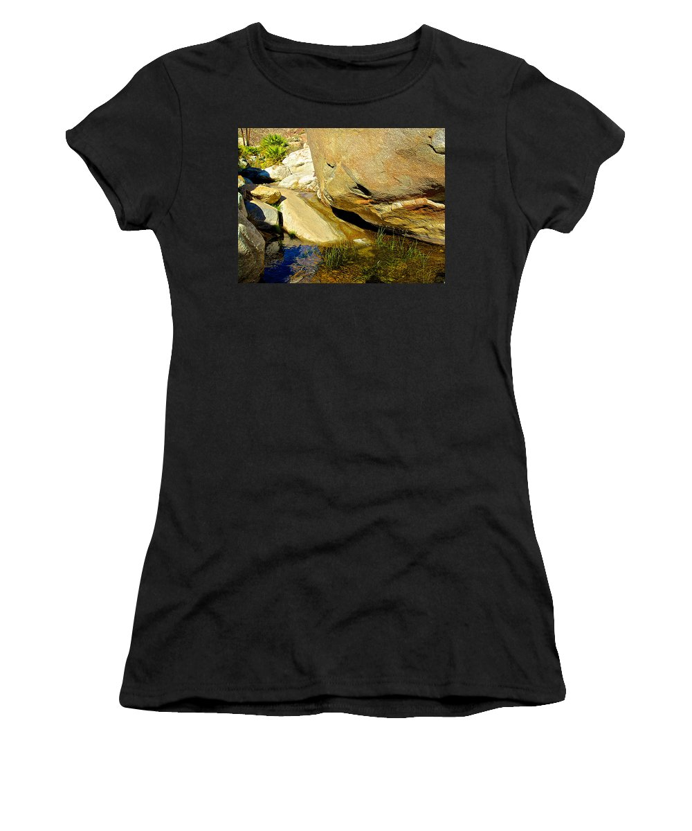 Water At Palm Oasis On Borrego Palm Canyon Trail In Anza-borrego Desert Sp Women's T-Shirt (Athletic Fit) featuring the photograph Water In Oasis On Borrego Palm Canyon Trail In Anza-borrego Desert Sp Campground-ca by Ruth Hager