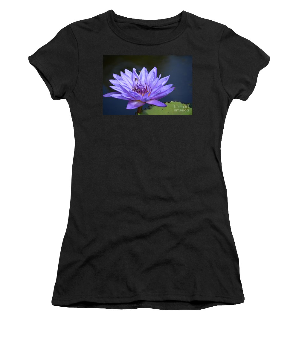 Dallas Arboretum Photos Women's T-Shirt featuring the photograph Water Lily by Ruth Housley