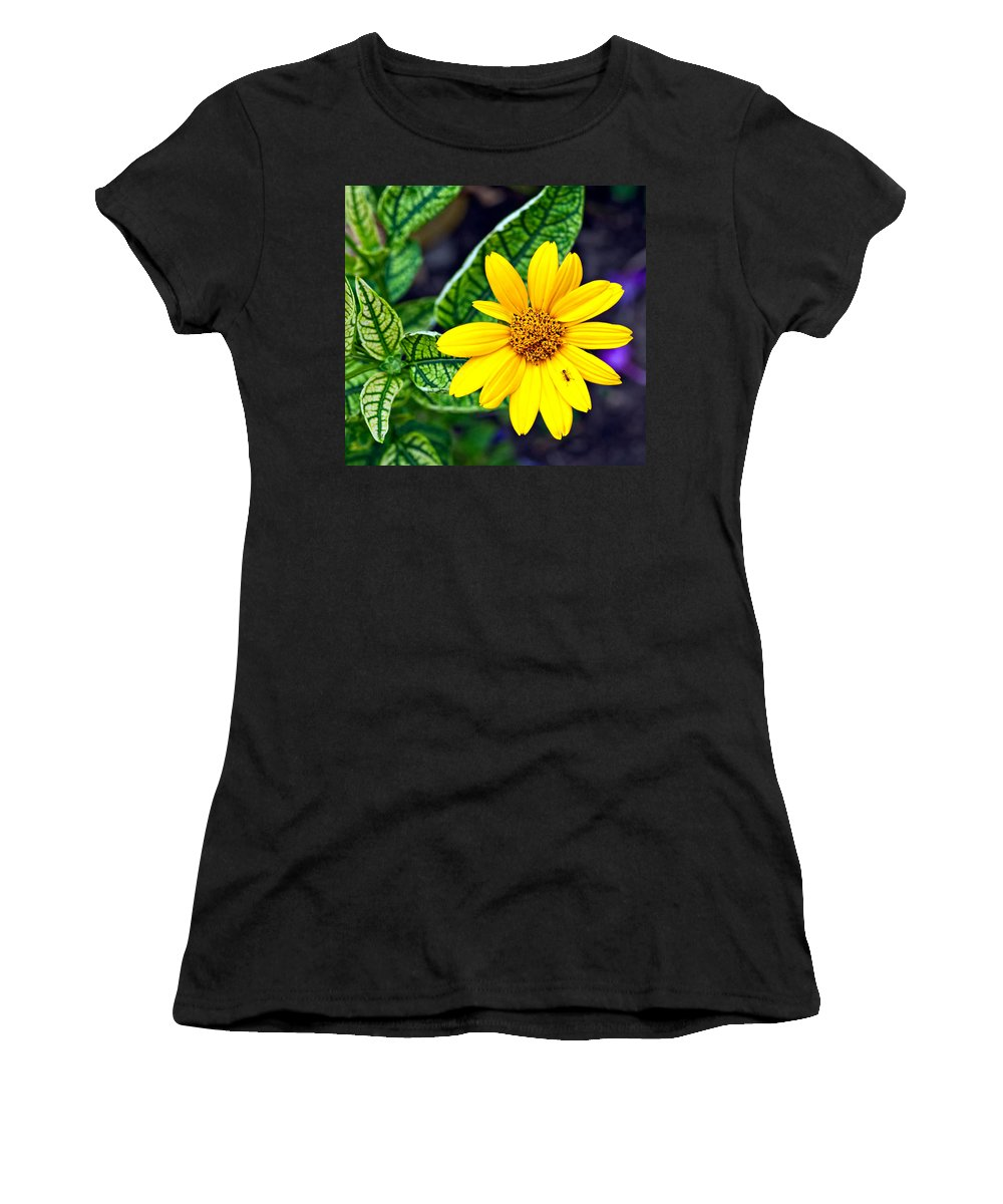 Flowers Women's T-Shirt featuring the photograph Welcome by Steve Harrington