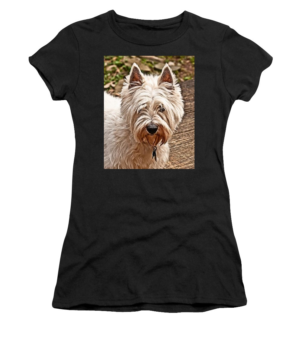 West Highland White Terrier Women's T-Shirt (Athletic Fit) featuring the photograph West Highland White Terrier by Robert L Jackson