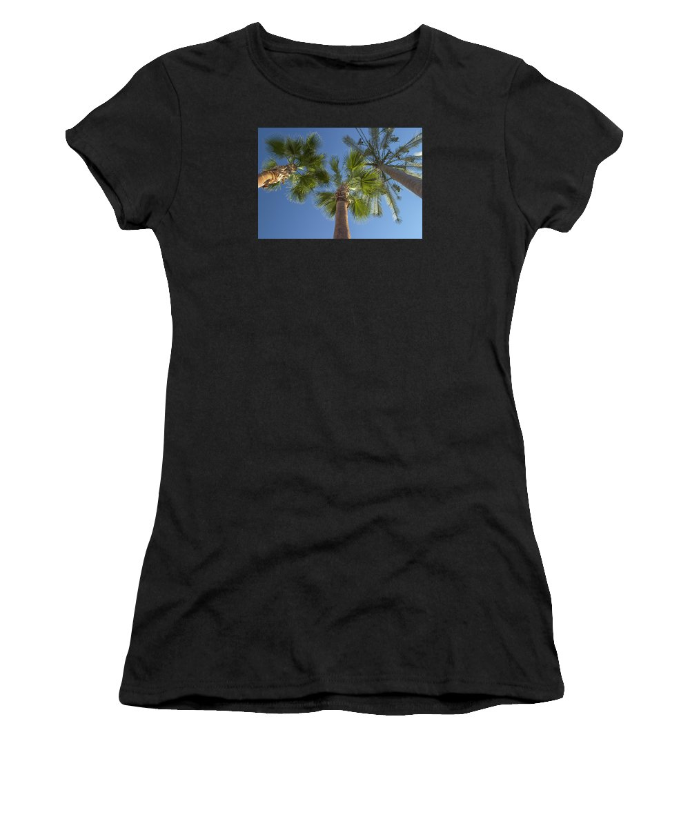 Palm Trees Women's T-Shirt featuring the photograph Which One Doesnt Belong 2 by Scott Campbell
