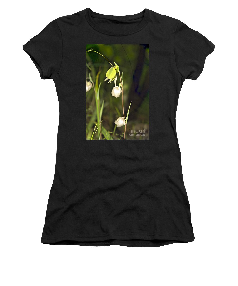 Wildflowers; Globes; Nature; Green; White Women's T-Shirt (Athletic Fit) featuring the photograph Whispers by Kathy McClure