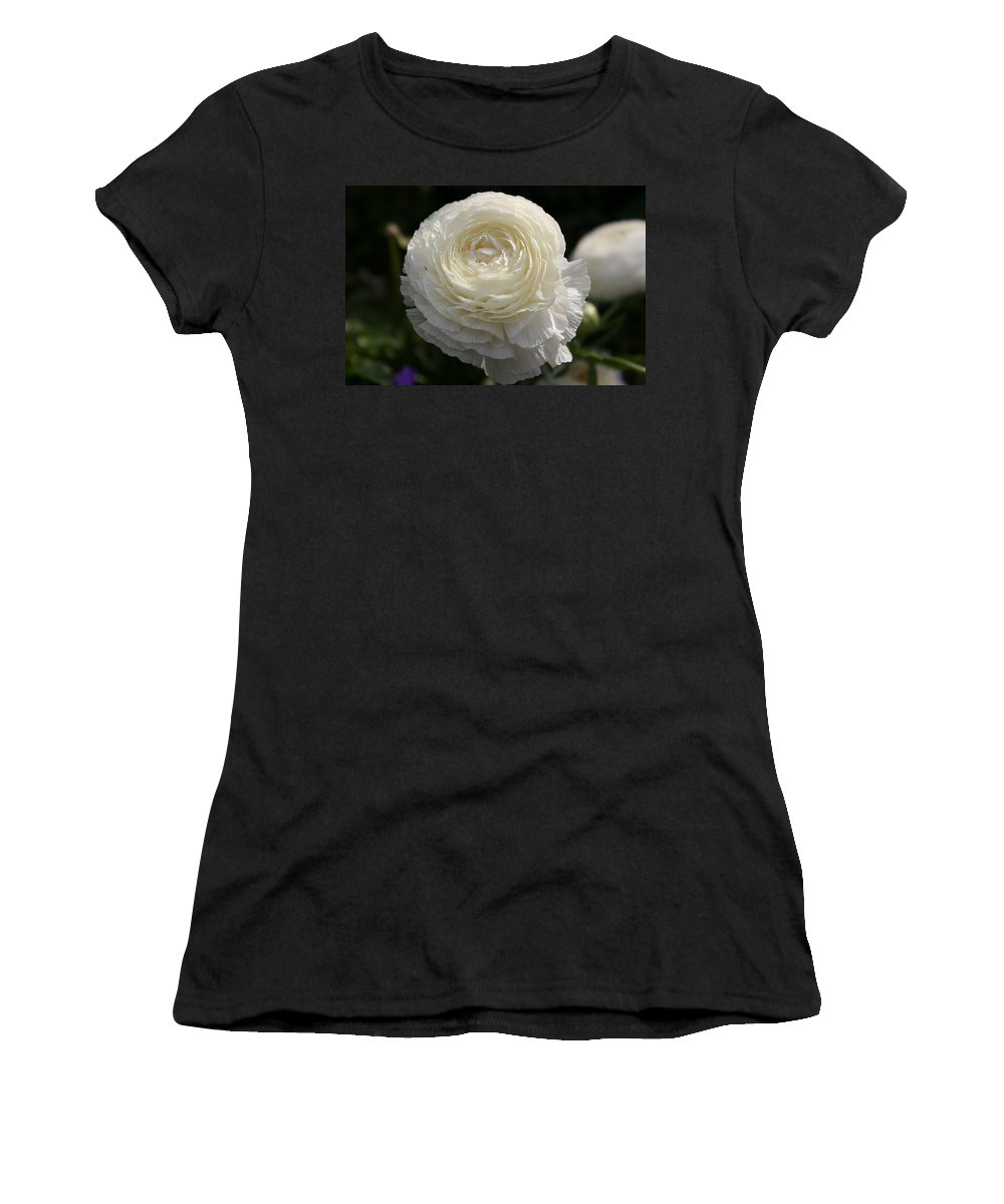 White Buttercup Women's T-Shirt featuring the photograph White Buttercup - Ranunculus by Christiane Schulze Art And Photography