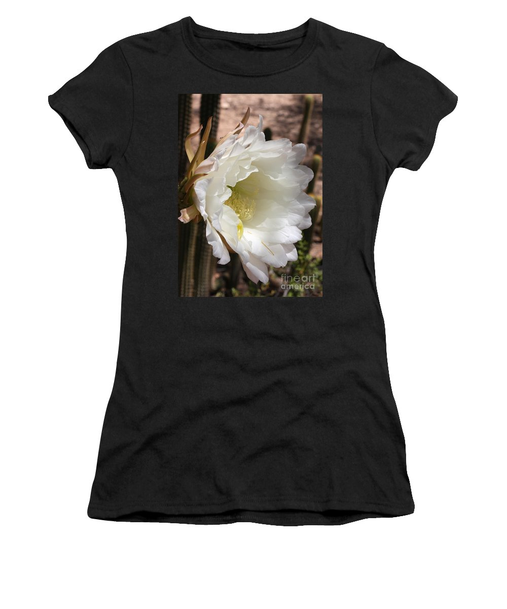 Cactus Flower Women's T-Shirt featuring the photograph White Cactus Bloom by Carol Groenen