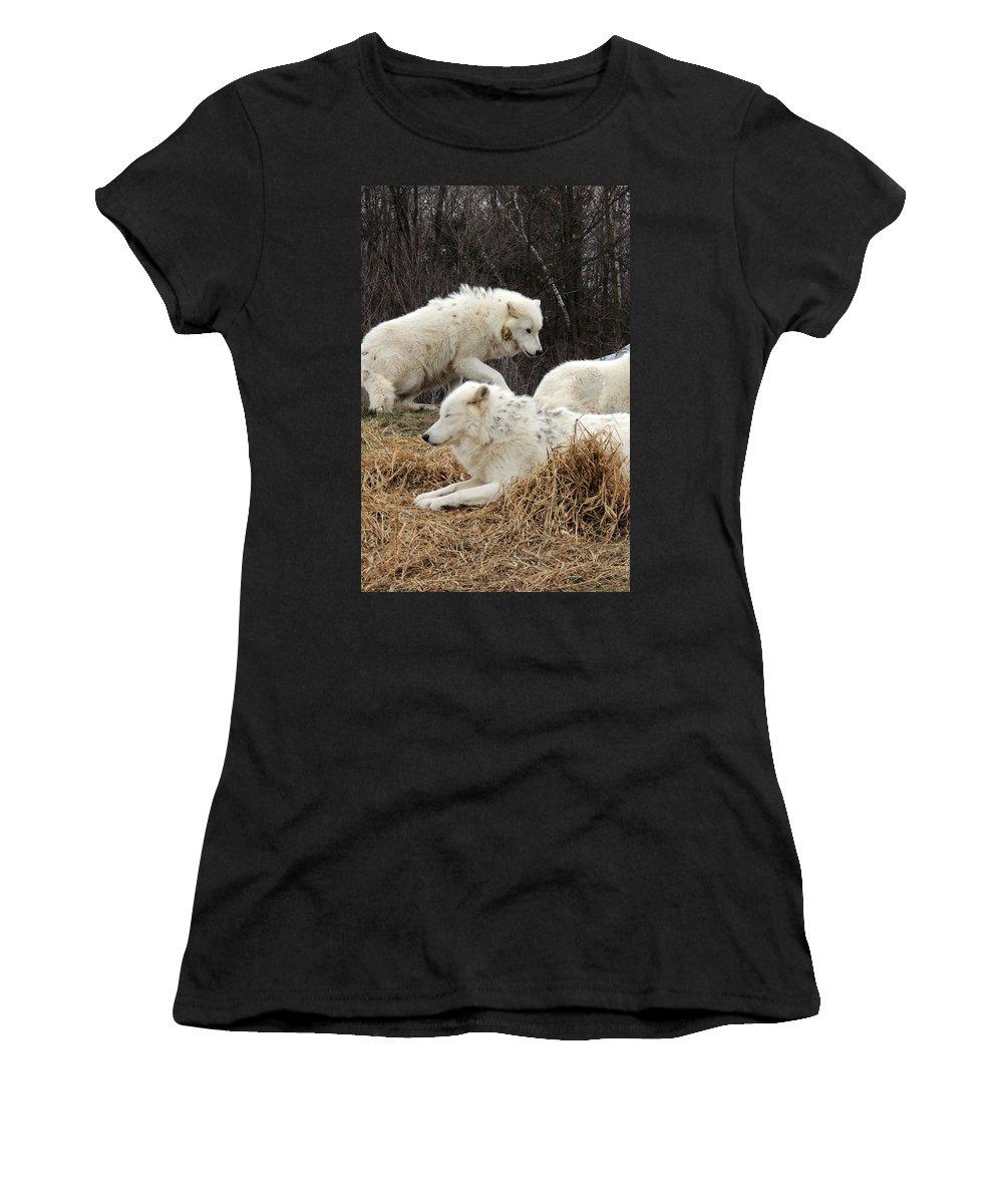 White Women's T-Shirt featuring the photograph White Furs by Munir Alawi