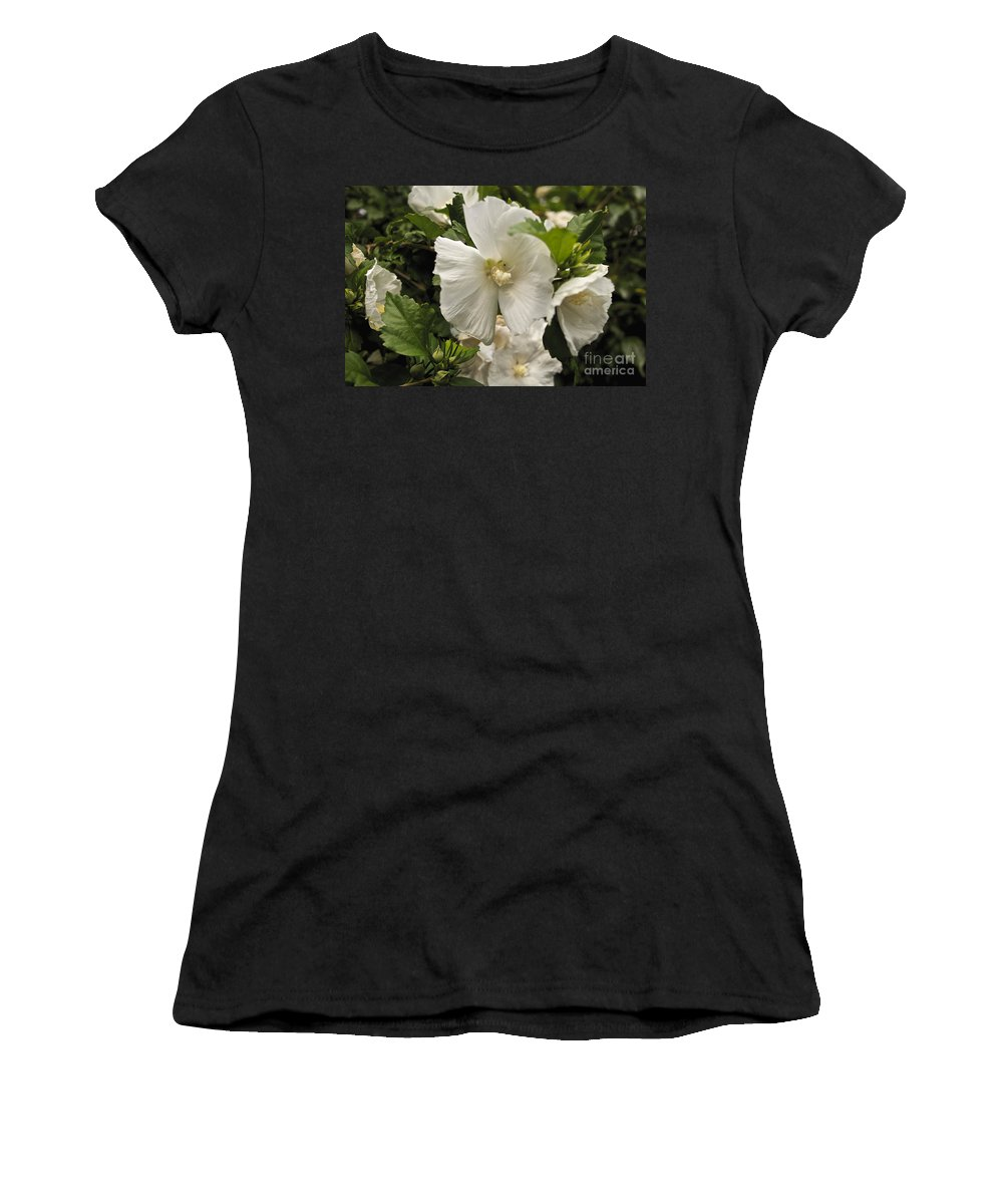 Tree Women's T-Shirt (Athletic Fit) featuring the photograph White Tree Flower by William Norton