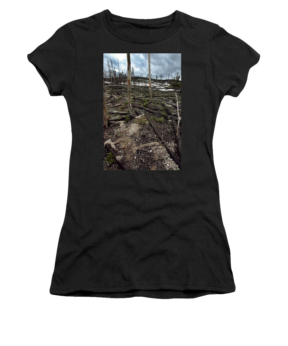 Yellowstone National Park Women's T-Shirt featuring the photograph Wild Fire Aftermath by Amanda Stadther
