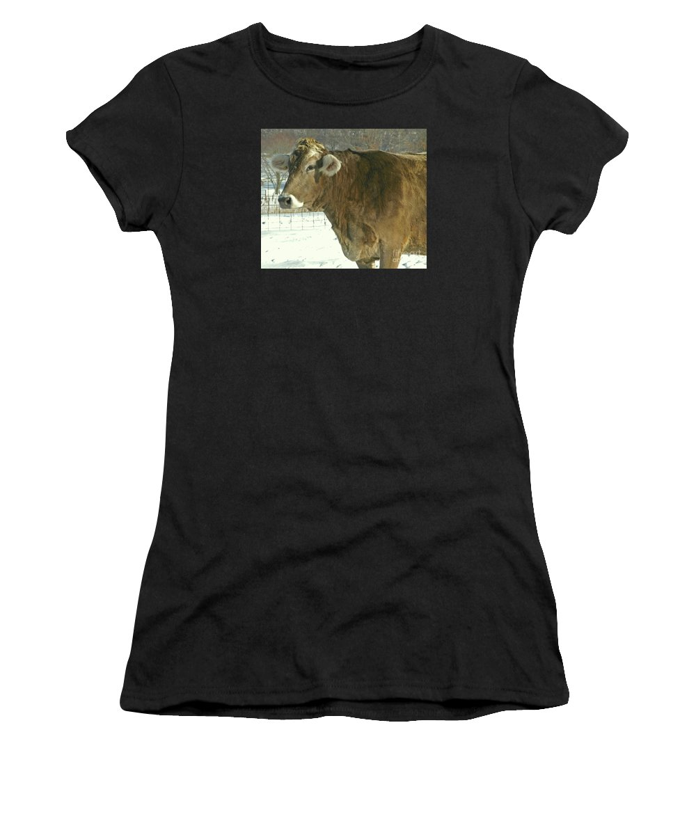 Cow Women's T-Shirt (Athletic Fit) featuring the photograph Winter Coat by Ann Horn