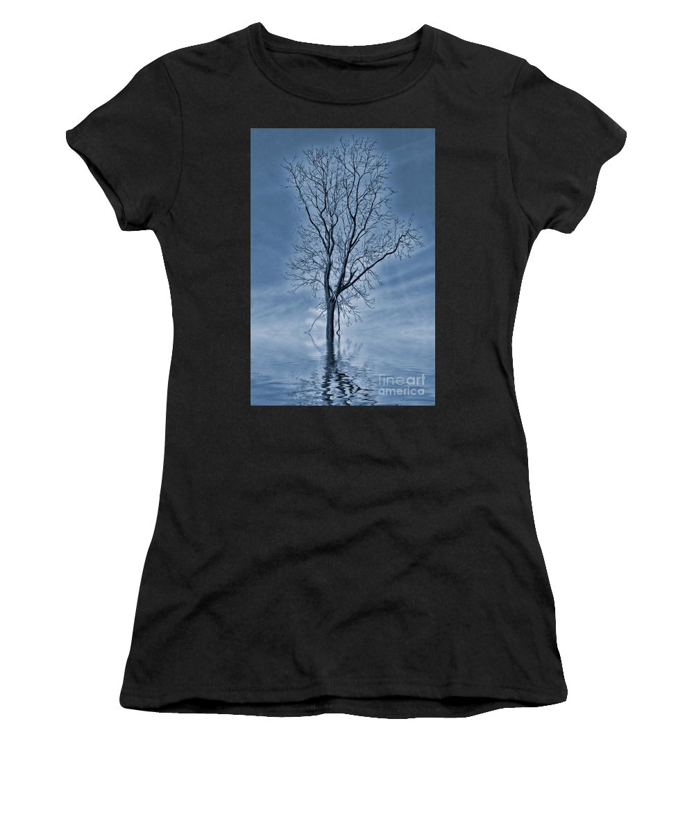 Flooded Tree Women's T-Shirt featuring the painting Winter Floods by John Edwards
